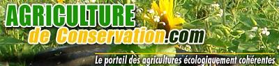 Agriculture de conservation - TCS
